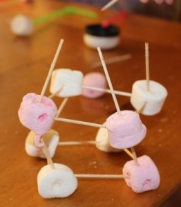 Marshmallow and toothpick house.