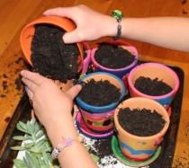 Adding soil.