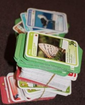 Lots of spare animal cards.