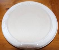 Plate of wet plaster.
