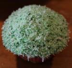 Grassy cupcake.